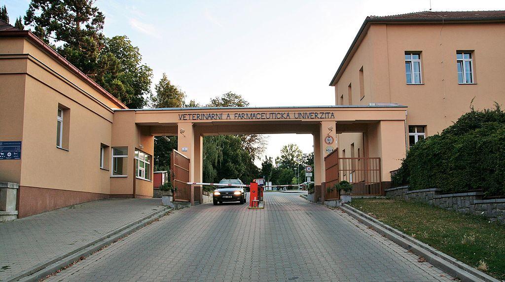 Brno VFU