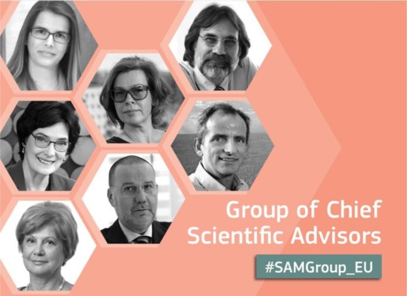 Group of Chief Scientific Advisors