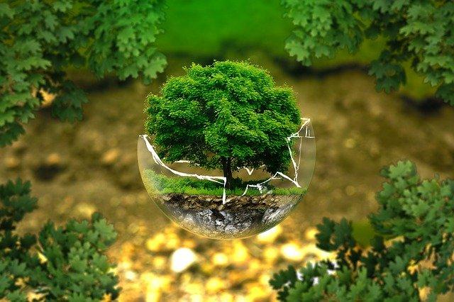 environmental protection 326923 640