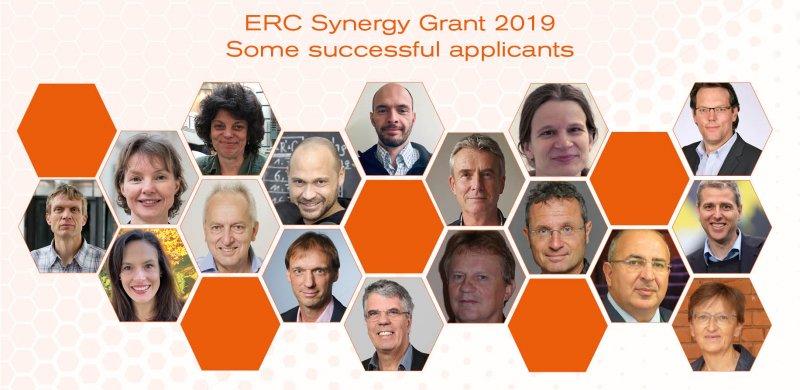 erc synergy 2019